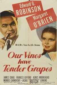 Watch Our Vines Have Tender Grapes Online Free in HD