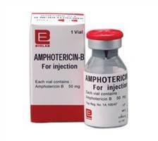 Amphotericin