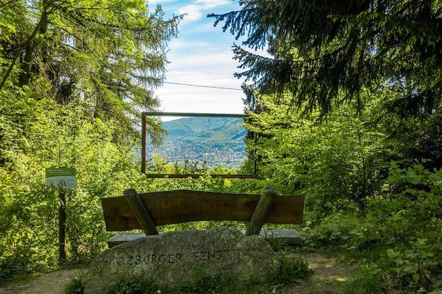 Gestütswiesen und Kästeklippen  Wandern Bad Harzburg 06