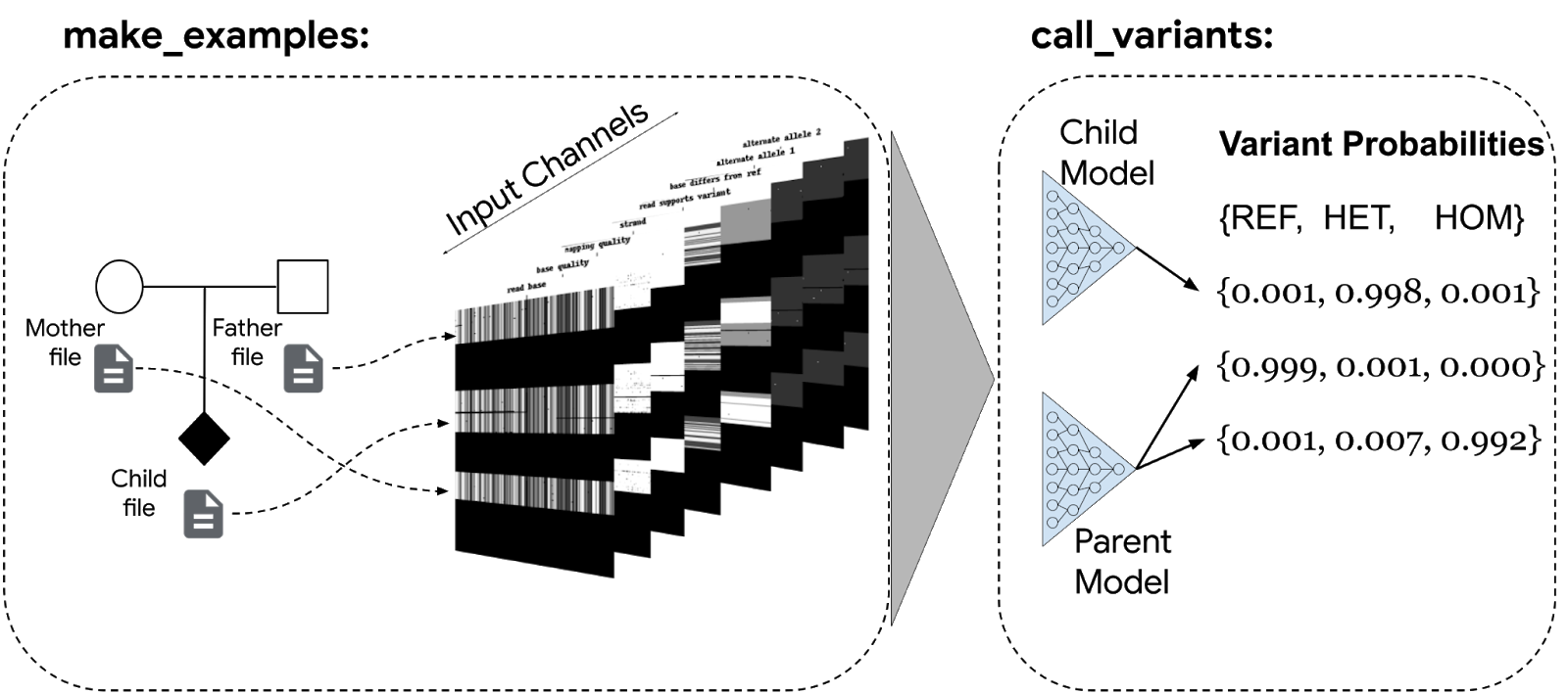 conceptual schematic of how trio files are used to create examples, which are then called by DeepTrio.