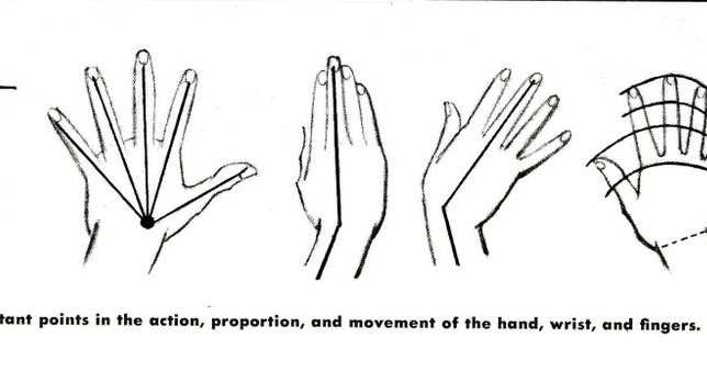 Hand Poses Galore!