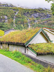 Sod roofs in Geiranger Norway
