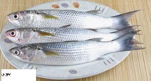 افضل طريقة لعمل سمك البورى المشوى فى الفرن بدون دخان مقفول
