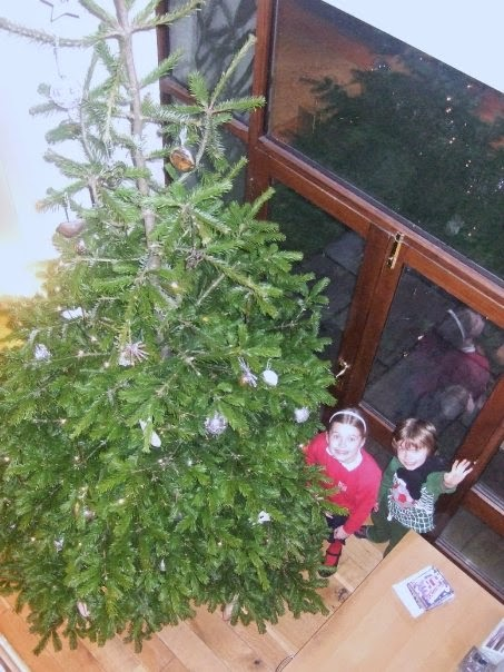 what lizzy loves house move christmas tree