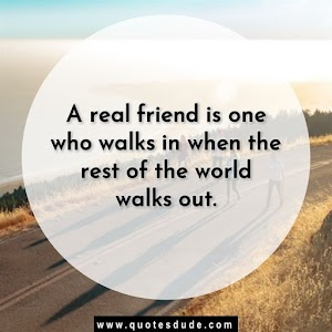 Best Friend Quotes For True and Amazing Friend [2020]