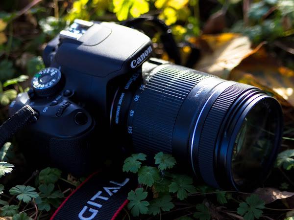ღFotografie mijn levenღ #34 | Photography Block