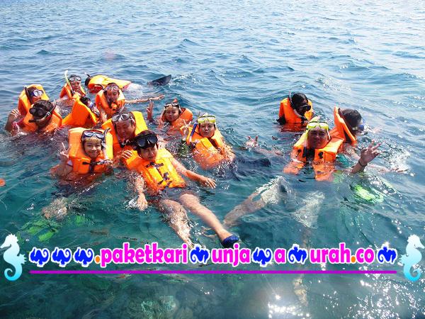 foto wisatawan ambil paket snorkeling di karimunjawa 2h1m