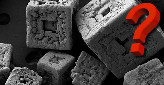 As 20 coisas mais bizarras que você sempre quis ver no microscópio - Capa