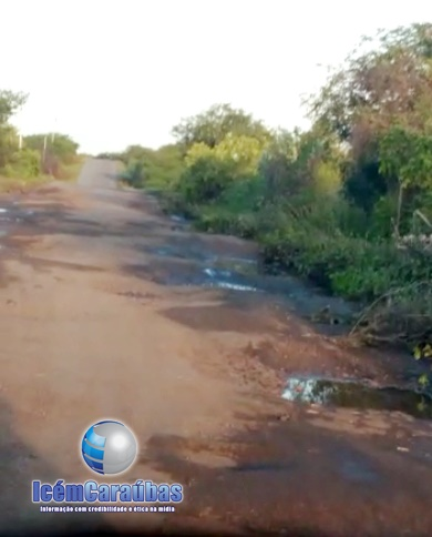 Buracos e animais na pista ameaçam quem passa pela RN-233 entre Caraúbas e Apodi; veja vídeo