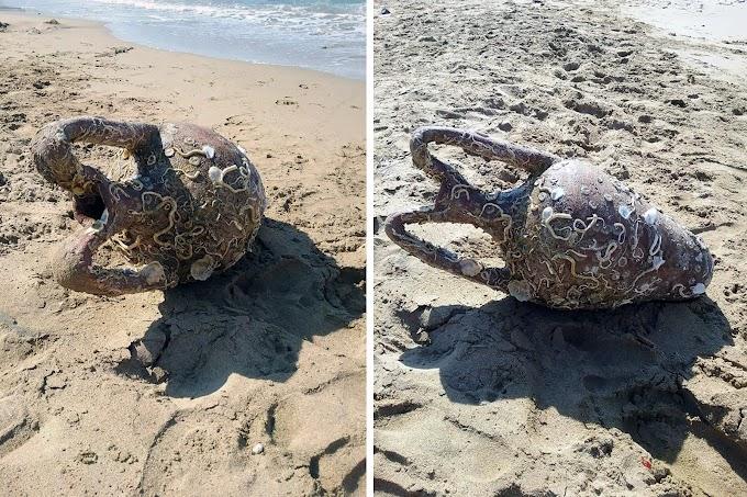 Βρήκαν αρχαίο αμφορέα σε παραλία της Κρήτης