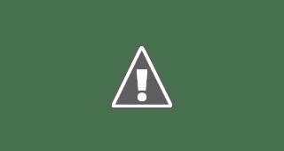 Mesin Potong Rumput Firman FGB-338M