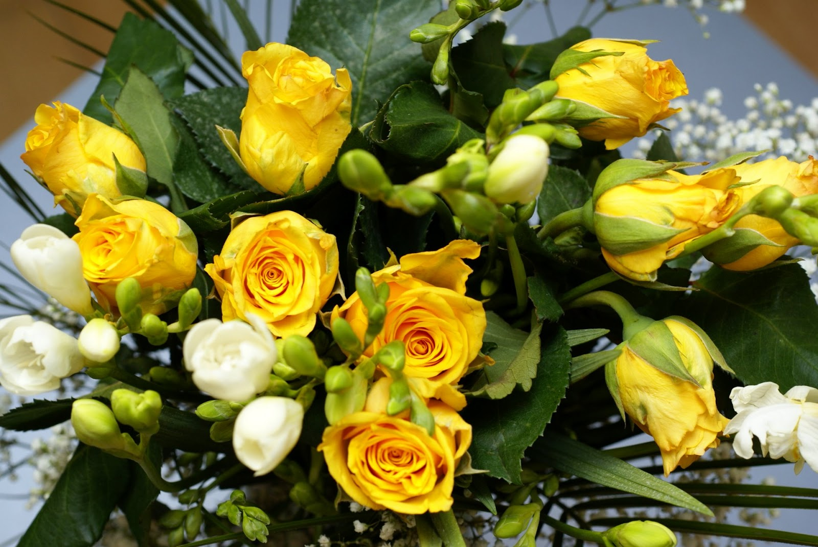 Romantic Flowers: Yellow Rose Flower