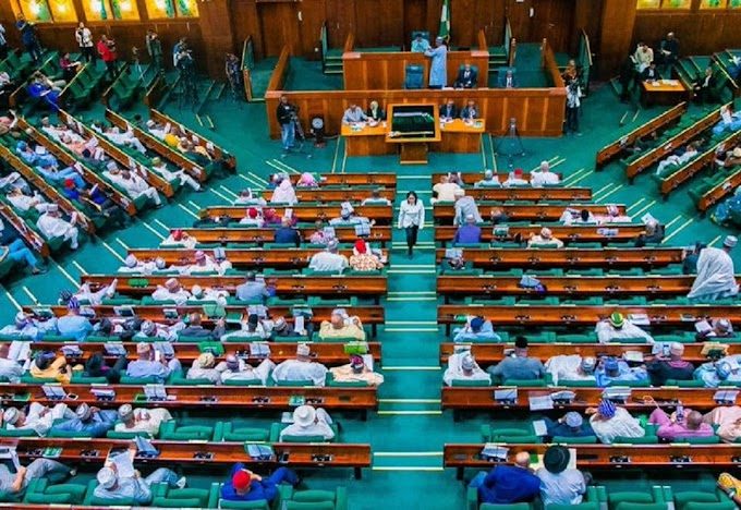 Nigeria to deploy robots, artificial intelligence to fight insecurity – Senate