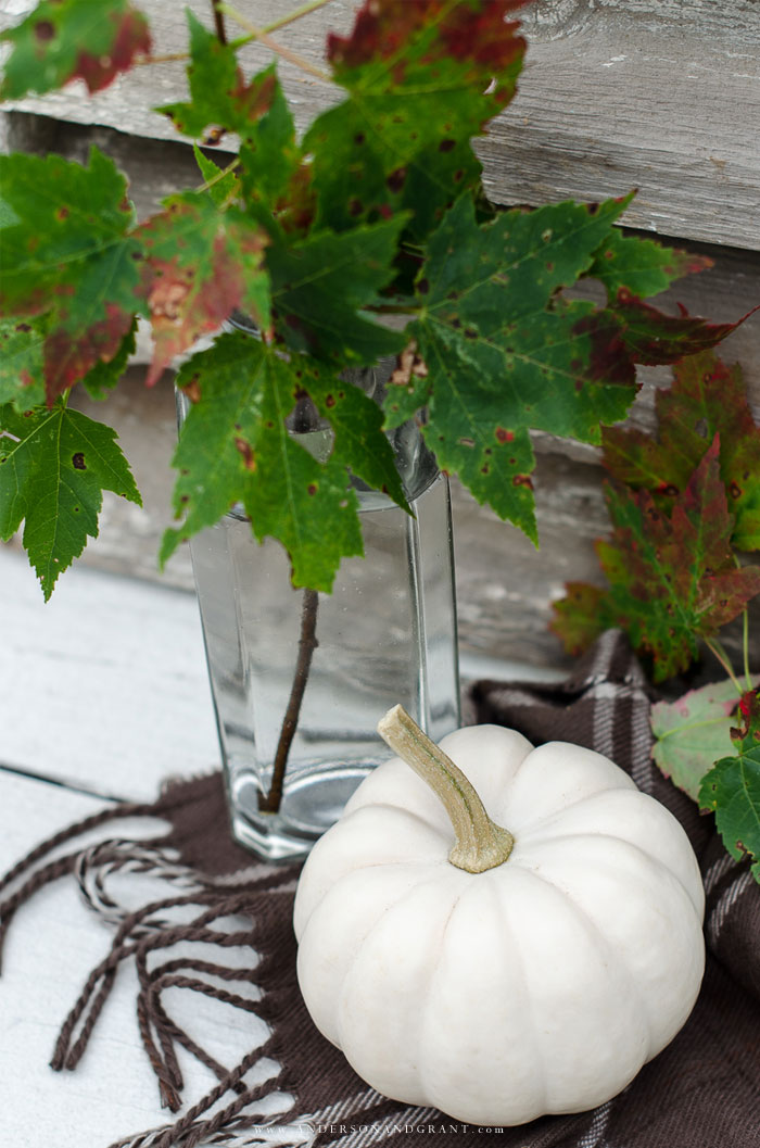 Simple fall decorating with a pumpkin and leaves  |   www.andersonandgrant.com