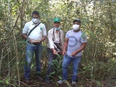 hoyennoticia.com, Corporación Preservar reforestará las márgenes de los ríos Ariguaní, Ariguanicito y sus afluentes