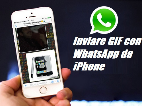 how to send gifs on iphone on whatsapp