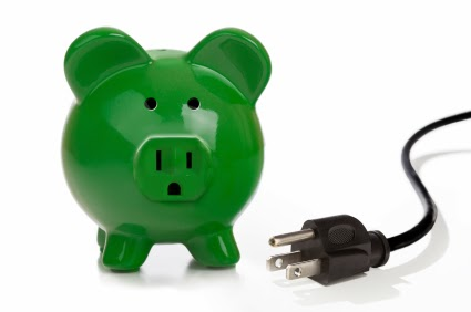 Switch off plug - green pig
