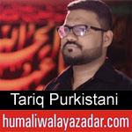 https://humaliwalaazadar.blogspot.com/2019/08/tariq-purkistani-nohay-2020.html