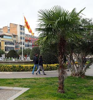 Plaça de Catalunya (Girona) per Teresa Grau Ros