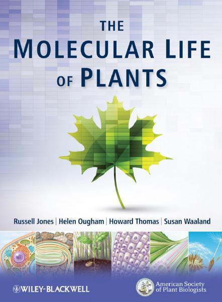 The Molecular Life of Plants (Part III)