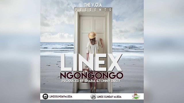 Linex - NgoNgoNgo
