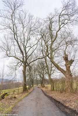 Droga z Miedzianki do Ciechanowic