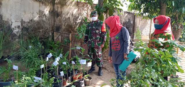 Babinsa Koramil  Wonosari Pendampingan PKK Lomba Tanaman Hias