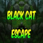Play  8bGames Black Cat Escape