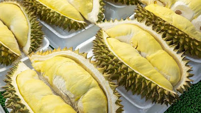 Besok, Solsel Gelar Festival Durian