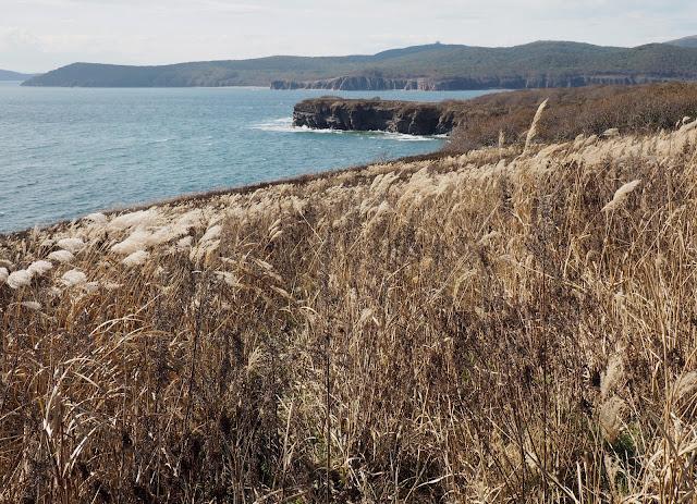 Владивосток, остров Русский, мыс Тобизина