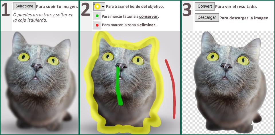 tutorial quitar fondo a imagen online