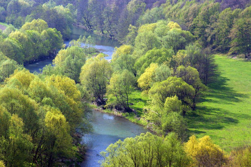 Natureza Espetacular