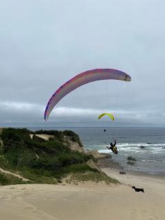 Paraglider with dog on Cape Kiwanda dune.
