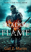 https://www.goodreads.com/book/show/28592340-shadow-and-flame