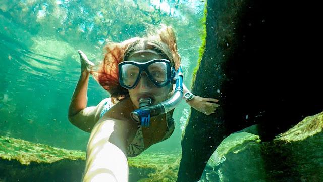 Underwater Florida Spring