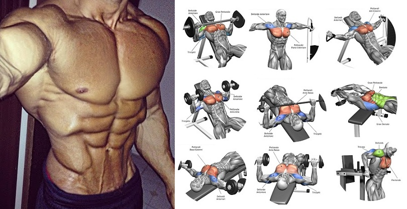 How to Get a Bigger Chest - 7 Easy Chest Exercises to Get ...