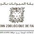 شركة حديقة الحيوانات بالرباط: مباريات التوظيف في مختلف التخصصات - 06 مناصب