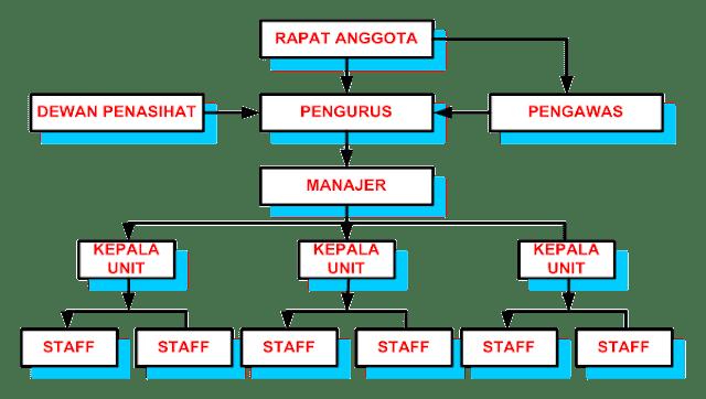 Struktur Internal Organisasi Koperasi