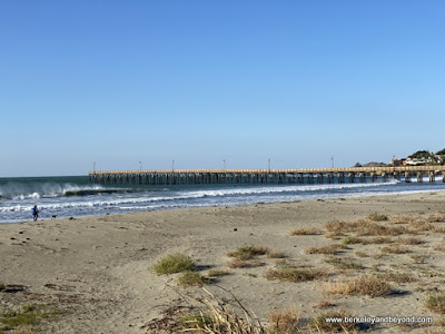 beach and pier in Cayucos, California