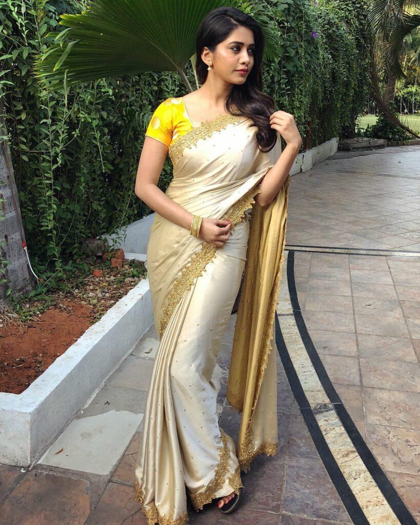 Actors Gallery: Nabha Natesh Is Beautiful In Saree