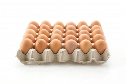 cartela de ovos marrom - os alimentos baratos e saudáveis