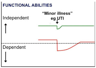 How functional abilities may decline in geriatric patients following minor insults pushing them from independence to dependence
