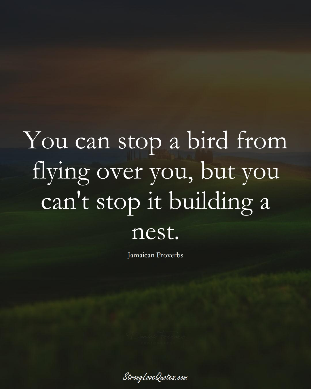 You can stop a bird from flying over you, but you can't stop it building a nest. (Jamaican Sayings);  #CaribbeanSayings