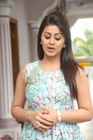 Nikki Galrani at Prema leela pelli gola trailer Launch ~  Exclusive 051.JPG
