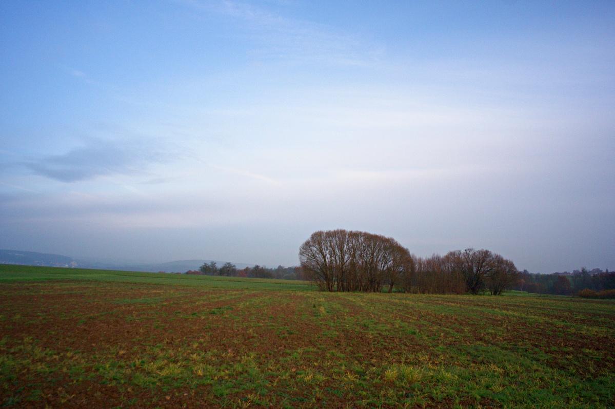 Wald Hain Reicheneck Reutlingen