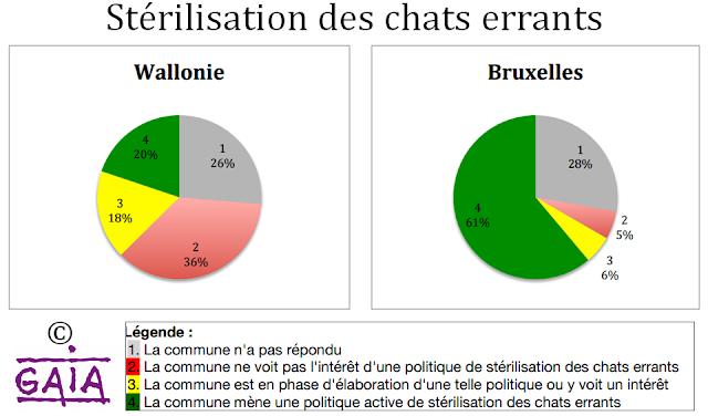 Nos amis les chats bruxellois - Identification obligatoire - Stérilisation des chats errants à Bruxelles et en Wallonie - Enquête de l'association GAIA - Bruxelles-Bruxellons
