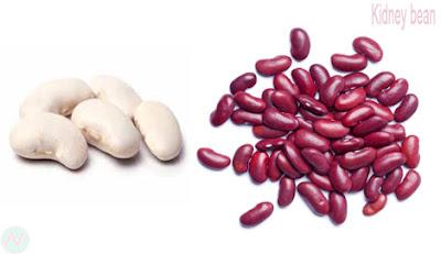 ছিম বিচি, Kidney bean, فاصوليا ذات الشكل الكلوي; Haricot rouge; Kidney-Bohne; राजमा; インゲン豆; Feijão Vermelho; Фасоль; Poroto; Barbunya