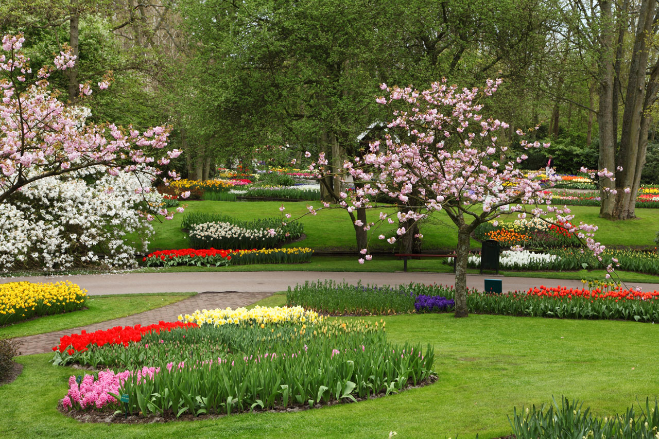Beautiful Flower Gardens Flowers Heaven Most Beautiful