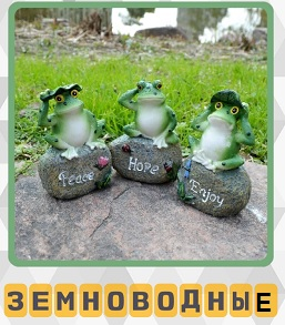 сделан памятник лягушкам земноводным, сидящих на камнях