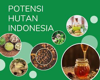 potensi alam hutan indonesia